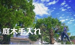 庭手入れ(ガーデンメンテナンス)のイメージ